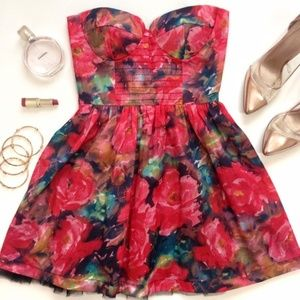 Sans Souci Rose Fit and Flare Dress